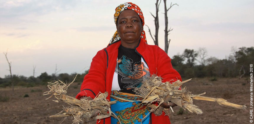 Almarinda, a farmer in Mozambique, holding drought-affected plants