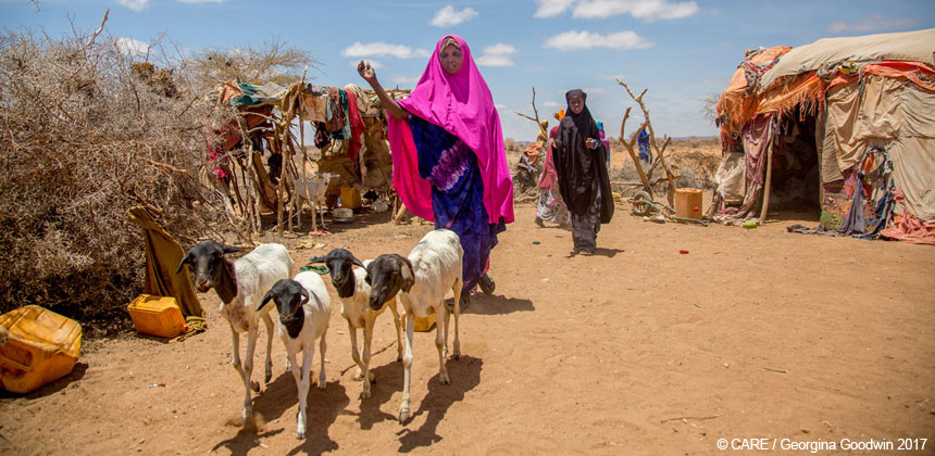 Amina herding goats in her compound