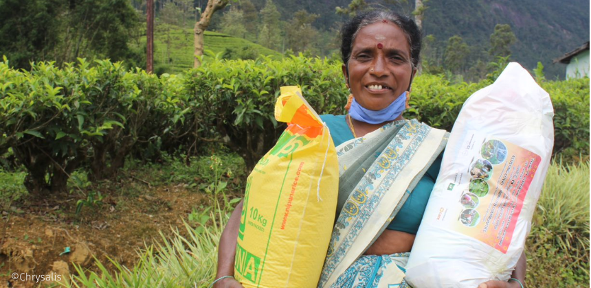 A member of the tea growing community part of the Twinings CDF programme