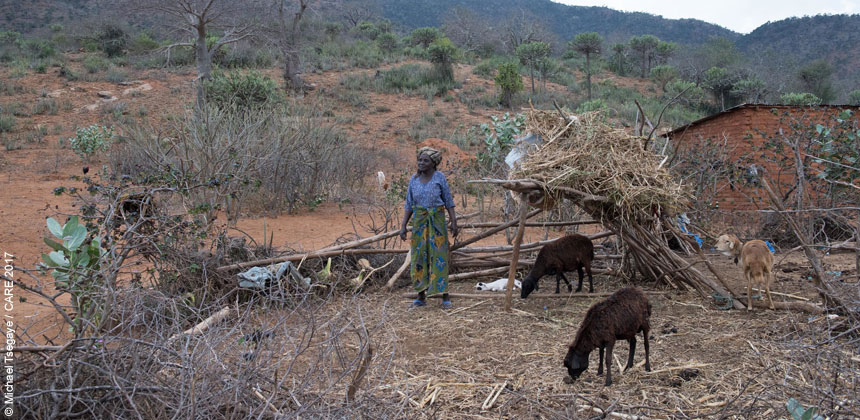 Eliza with her livestock in an enclosure on her farm