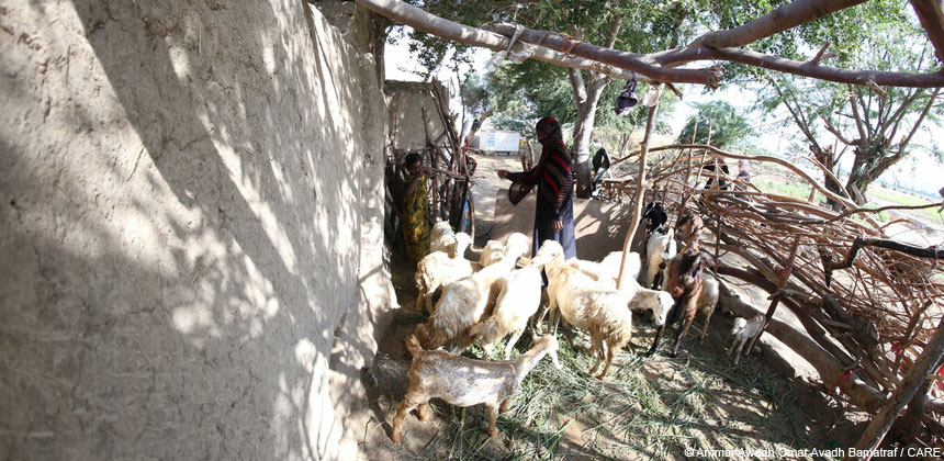 A woman with her livestock in Yemen