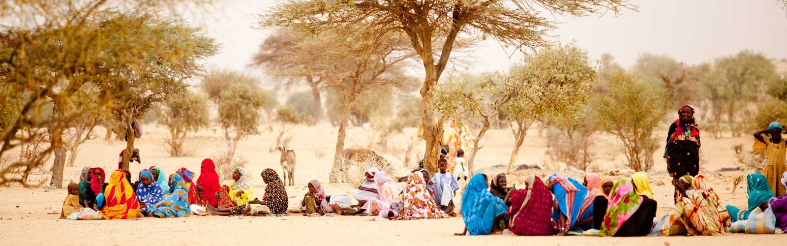 Women sitting under trees during a drought in Chad