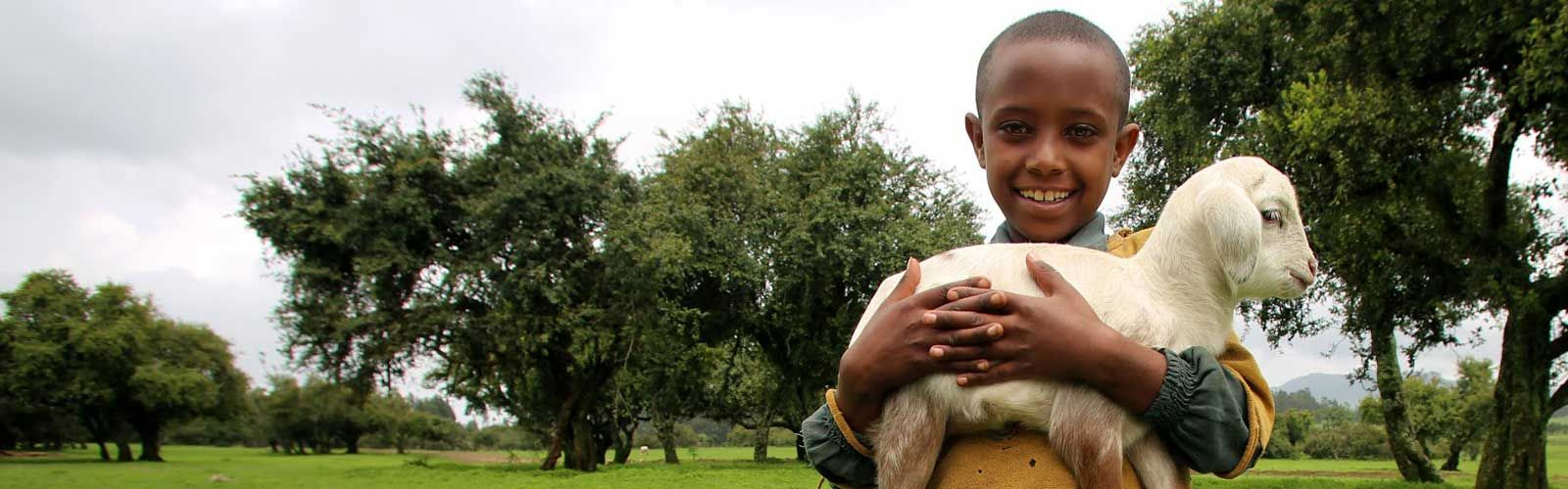 A girl in Ethiopia holding a sheep