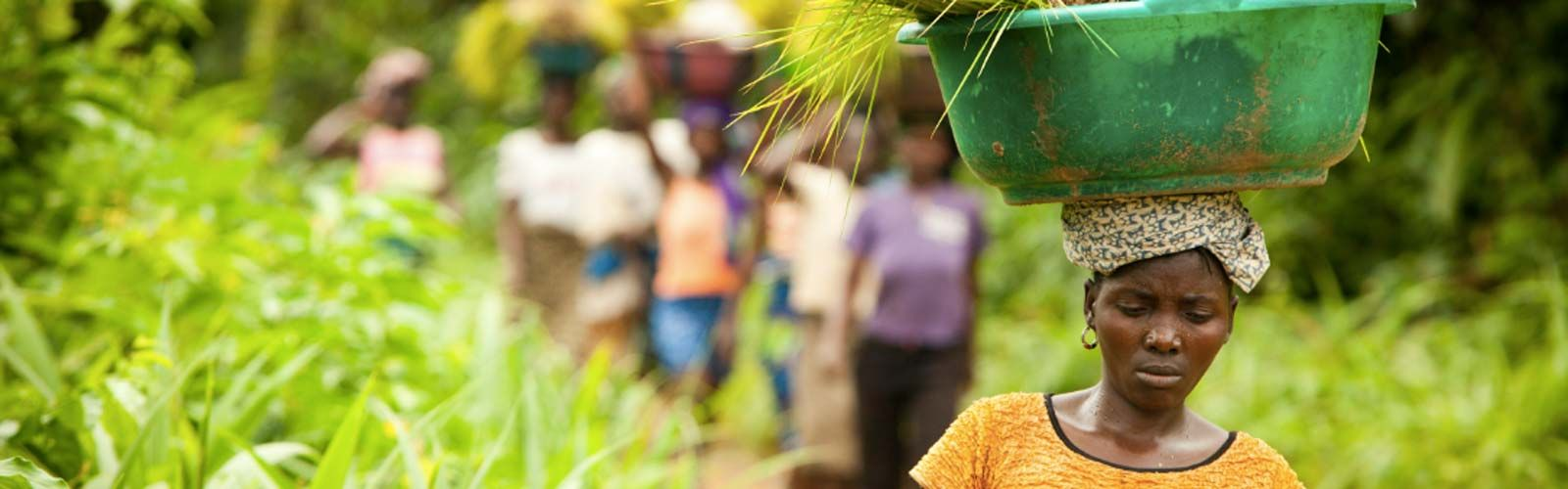 A woman in Liberia returning from her farm