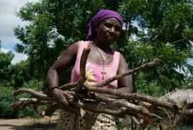 Rose Katandika carrying firewood