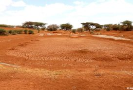 A dried-up reservoir in Somaliland