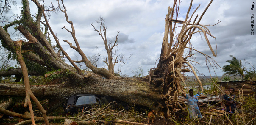 A tree uprooted by Cyclone Pam in Port Vila, Vanuatu